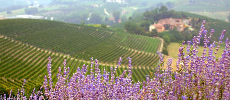 Ligurien och Piemonte