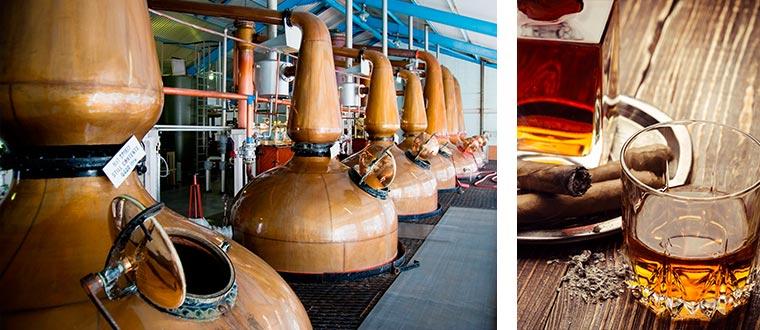 Skottland Whiskyspecial 8 dagar ✈